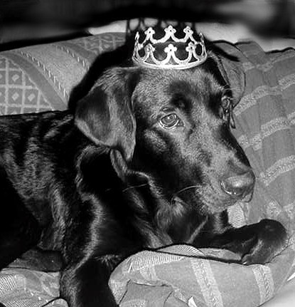 King Sawyer