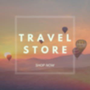 TRAVEL STORE 2.png