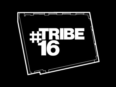 #TRIBE16 - A 60 Second Promo
