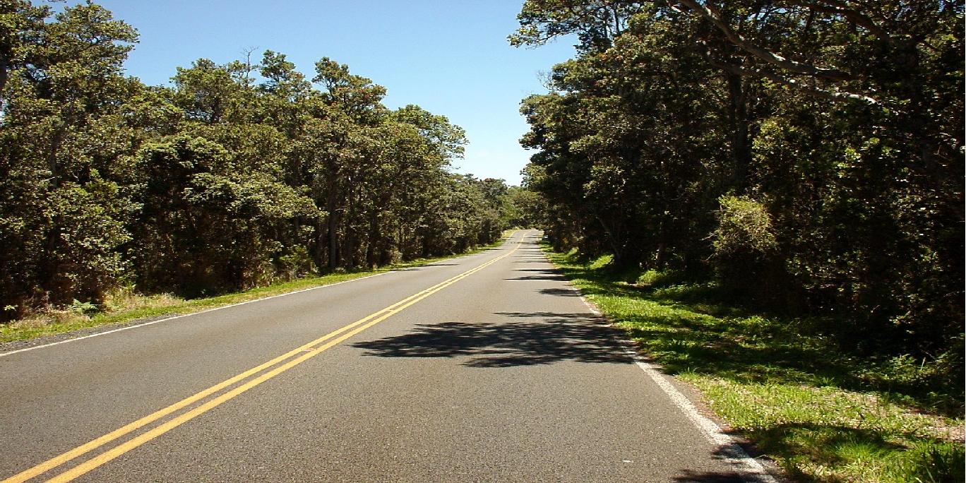 Road pict.jpg