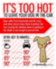 Dogs in hot cars.jpg