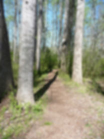 Powderhorn Nature Trail 2.jpg