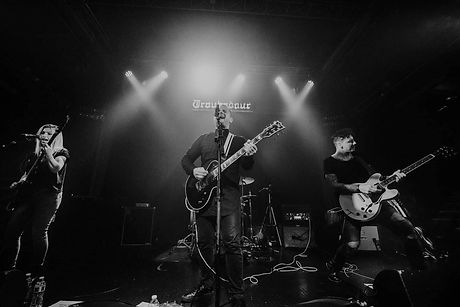 Yard Of Blondes.JPG