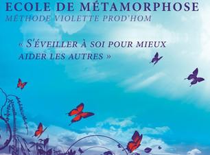 Ecoledemetamorphose_2019 (2).jpg