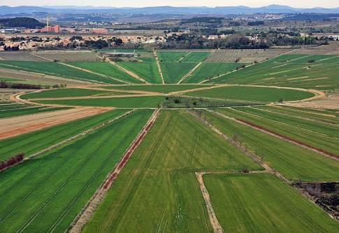oppidum-enserune.jpg