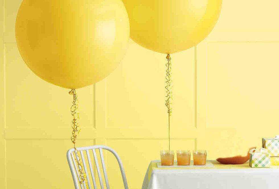 Reuze Helium Ballon  70 cm!
