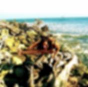 Lou playa_Ashtanga Vinyasa Yoga_Rolfing_