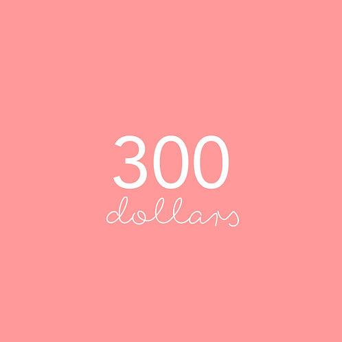 Three hundred dollar gift voucher