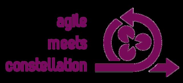 agilemeetsconstellation_Logo (002).png
