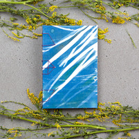 sagemixing-grass-slant-1.jpg