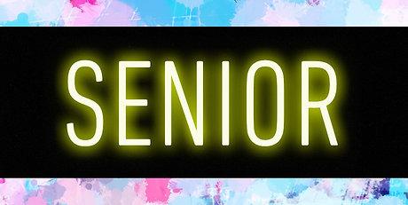 Senior Online Lessons