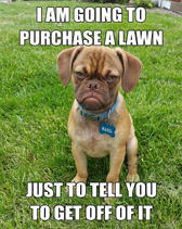 purchase-a-lawn-resized.jpg