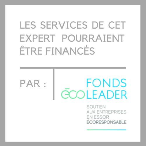 Logo expert FÉ.png