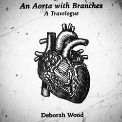 An Aorta with Branches