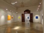 Sonia Costantini Exhibitions