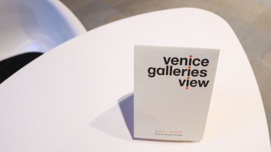 Venice Galleries View