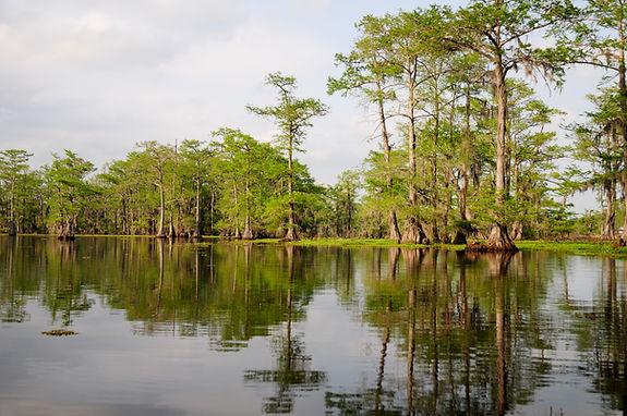 The Louisiana Watershed Initiative