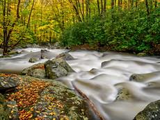 Marshmallow Rapids
