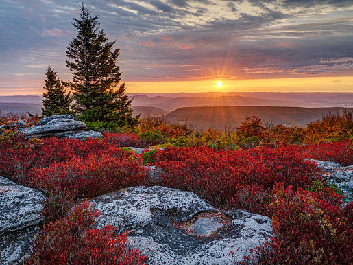 Sunrise, Bear Rocks