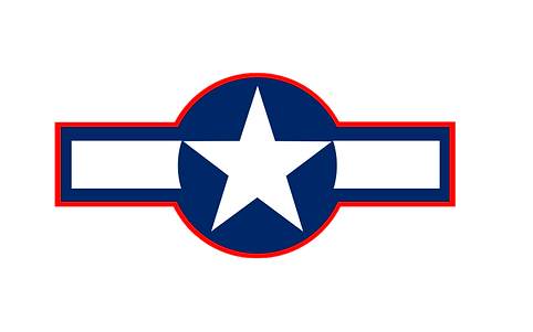 Top Gun Military Logo