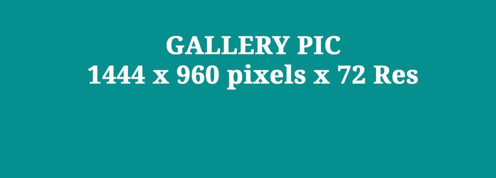 Gallery Pics Blank.jpg