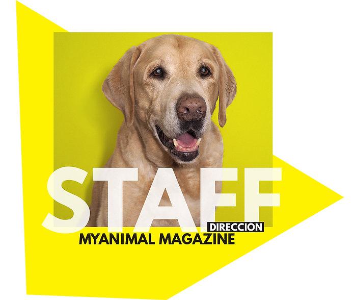Revista perros españa. Staff. Myanimnal Magazine