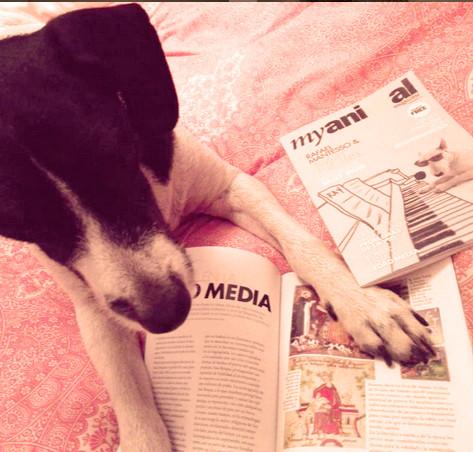 Amigos Myanimal Magazine @perrosconhistoria