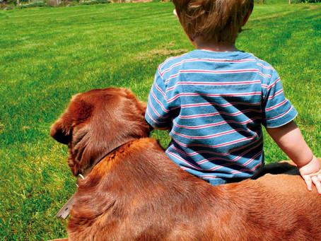 El vínculo entre los niños y los perros