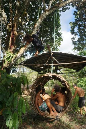 Projekt brazylijski