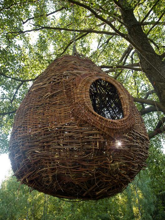 Remiz nest