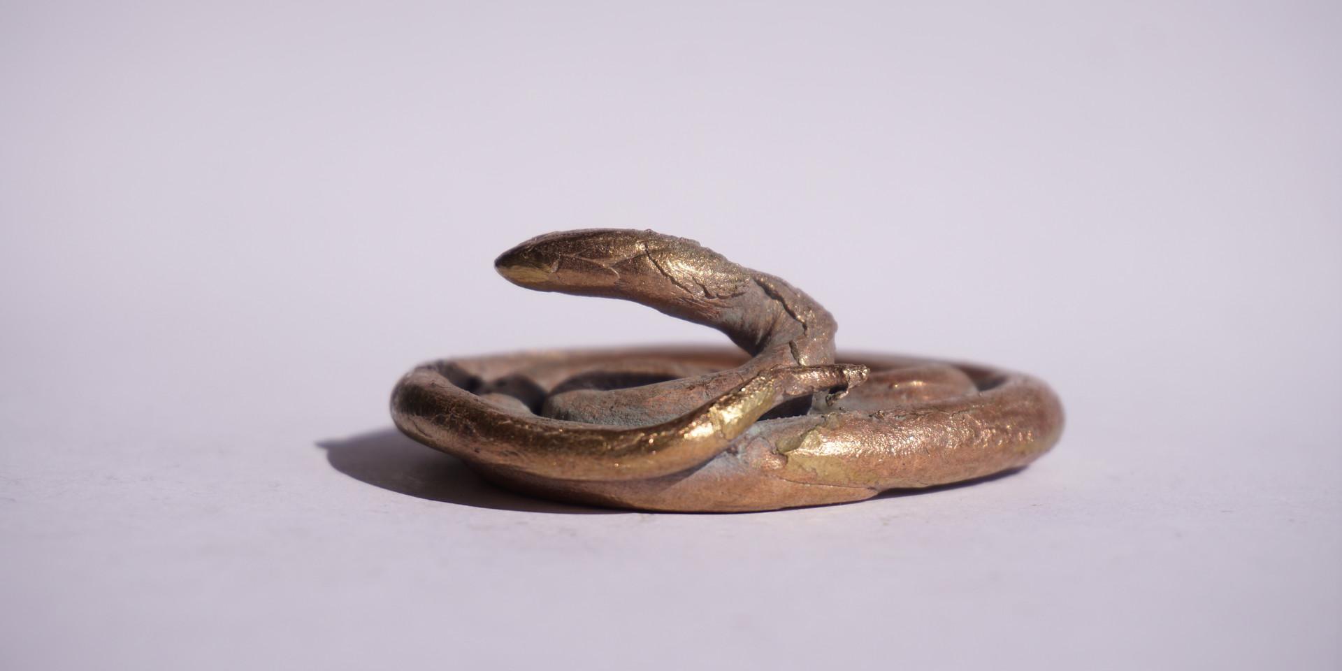 uma cobra.JPG