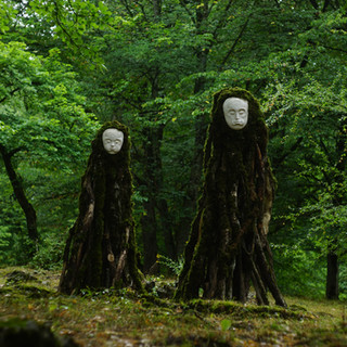 Faces of the Forest