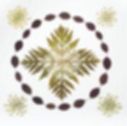 Fern, Queen Anne's Lace, smoke bush eleg