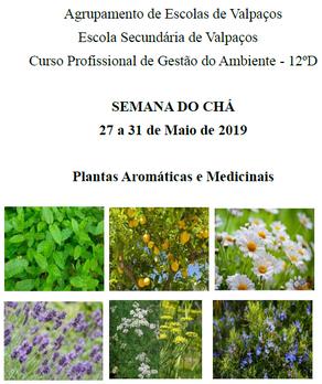 SEMANA DO CHÁ – 27 a 31 de Maio 2019