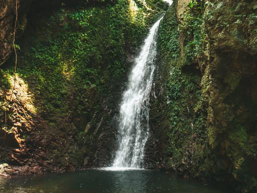 Ng Tung Chai Waterfalls to Shing Mun Reservoir