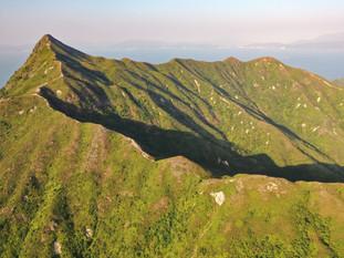Sharp Peak