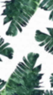 palm leaves 1.jpg
