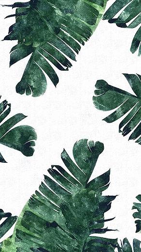 palm leaves 1.jpg