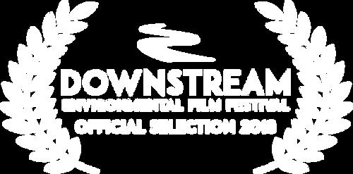 Downstream Film Festival