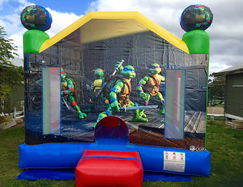 ninja_turtles_jumping_castle.jpg