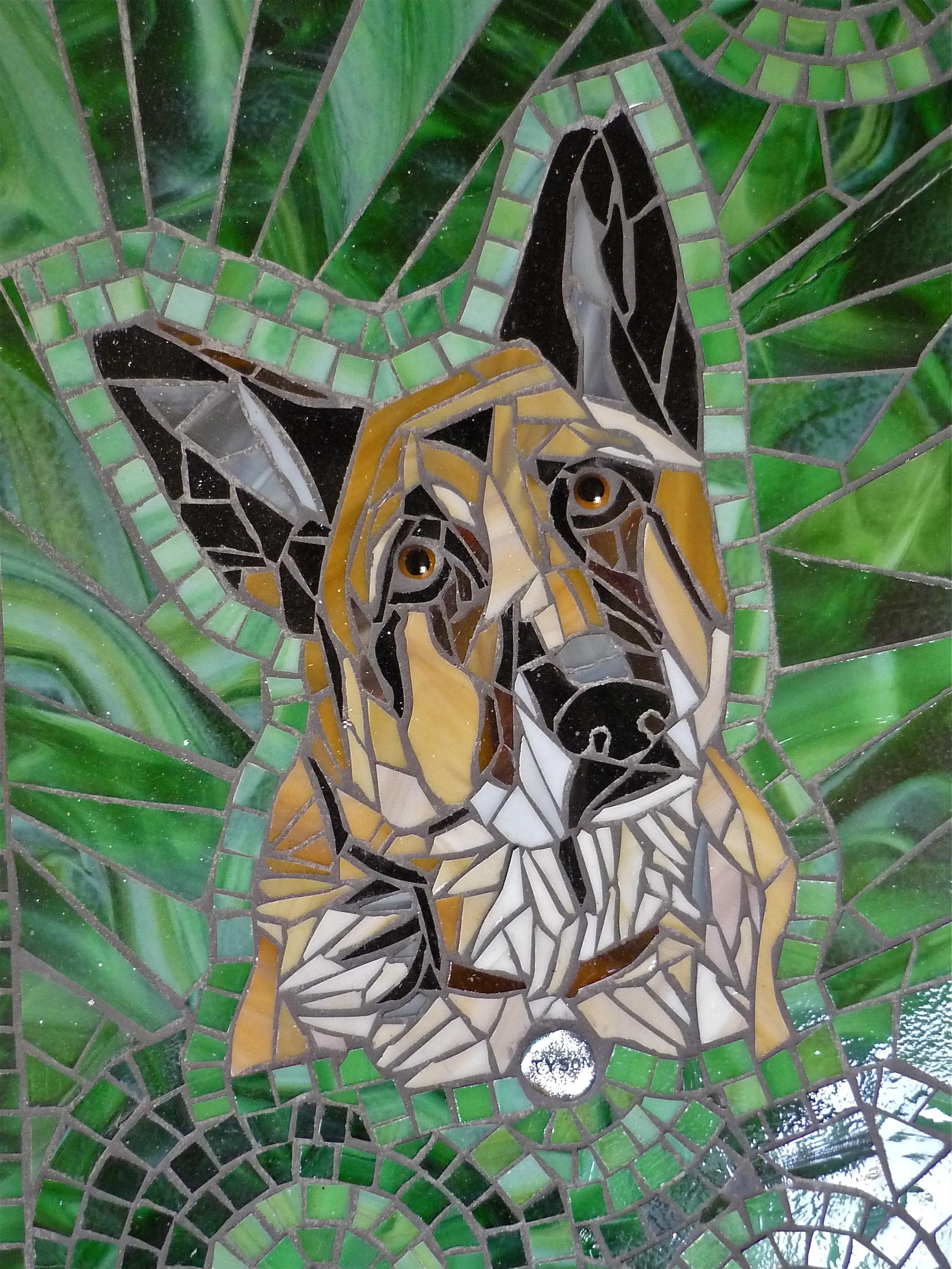 Dog portrait. Tyson