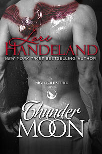 Book Cover Thunder Moon