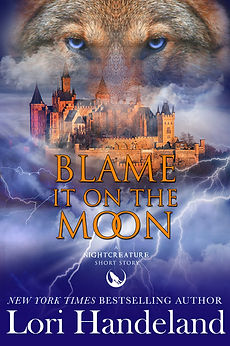 Book Cover Blame it on th Moon