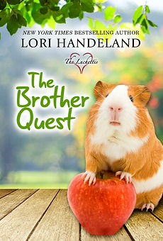Book Cover The Brother Quest