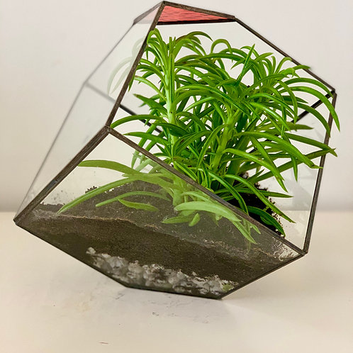 Polygonal large Flower Pot with glass, vitro red detail & metal by Babapots