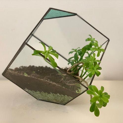Polygonal large Flower Pot