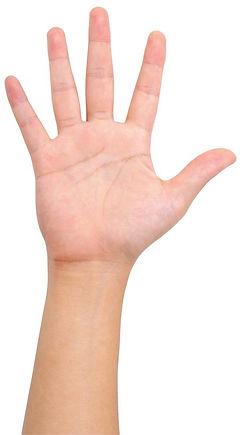 5 finger.jpg