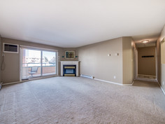 Living Room / Gas Fireplace