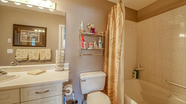 The Lower Bathroom