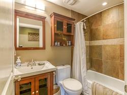 Media Room Bathroom
